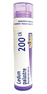 Boiron Ledum Palustre 200CK Homeopathic Medicine for Insect Bites, 80 Count