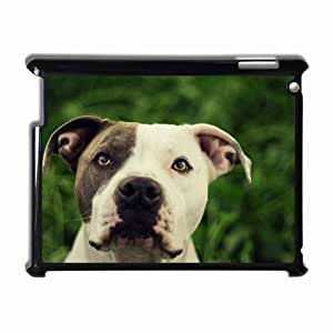 Customized Back Cover Case For iPad 2 3 4 Hardshell Case, Black Back Cover Design Pit Bull Personalized Unique Case For iPad 2
