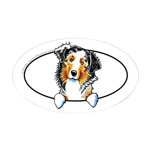 (CafePress Australian Shepherd Peeking Bumper Oval Bumper Sticker, Euro Oval Car Decal)