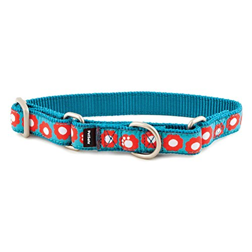 PetSafe Fido Finery Martingale-Style Dog Collar, 3/4-Inch, Small, Teal My Heart