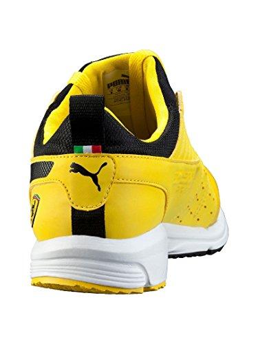 Yellow Sf Zapatilla Baja Unisex Puma Adulto Pitlane 7Yq5xa