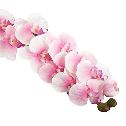 deeseetm-artificial-flowers-simulation-butterfly-orchid-phalaenopsis-branch-home-garden-diy-decor-ho