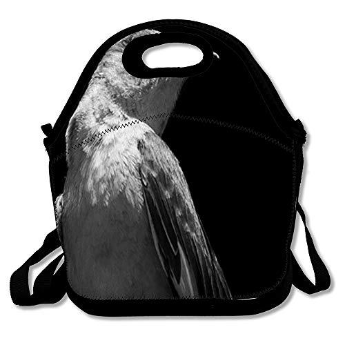 Reusable Lunch Bag for Men Women Mockingbird Brown Beak Northern Nature Gray Songbird Bird Black White Closeup Design Insulated Lunch Tote for Travel Office ()