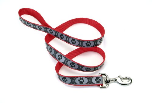 Lazer Brite Reflective Dog Leash, 6-Foot, Red with Tribal Paws