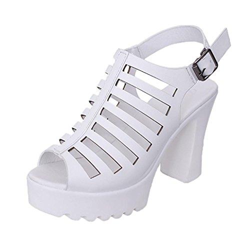 WOCACHI Women Shoes レディース ファッション SN689696986