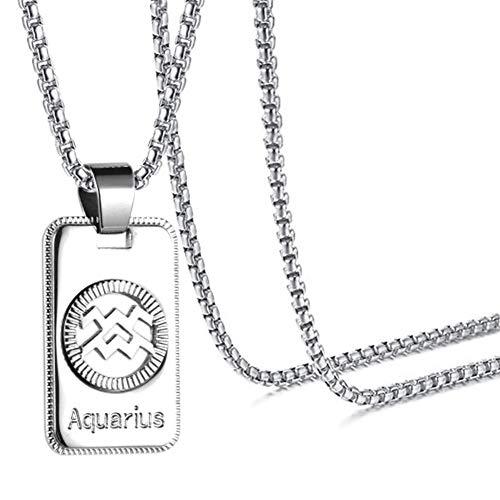 Xusamss Fashion White Titanium Steel Twelve Constellations Dog Tag Pendant Necklace with Chain ()