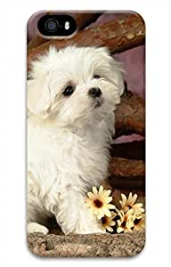 iPhone 5 5S Case Lovely Animals White Dog Funny Lovely Best Cool Customize iPhone 5 Cover