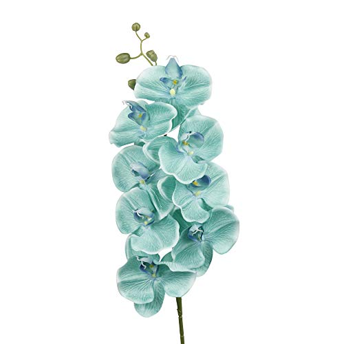 Spray Phalaenopsis (Angel Isabella, LLC 4pc-43Inch Large and Long Stem Keepsake Long-Lasting Phalaenopsis Orchid Spray with 8 Flowers 5buds (Spa Aqua Teal))