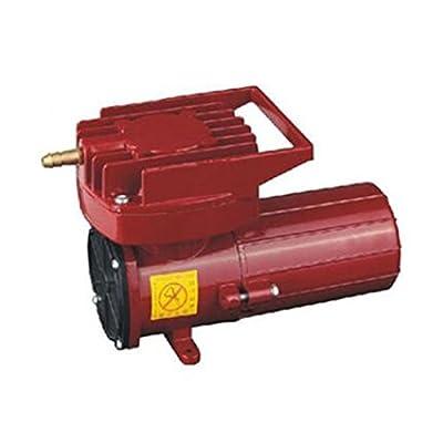 Tsofu Store DC 12V Fish Pond Hydroponics Aquaculture Air Compressor Pump 50L/Min