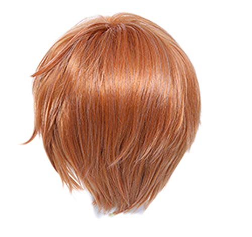 Souma Kyo Wig Fruits Basket Anime Brown Short Hair Halloween Cosplay Costume Accessory]()