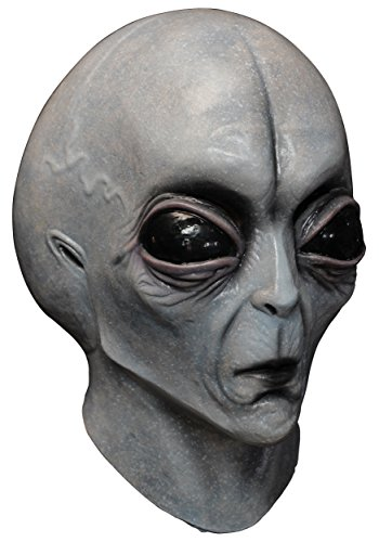 Area 51 Alien Adult Grey Mask for Halloween -