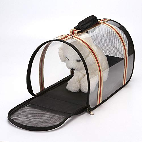 (WENNEW Pet Backpack Out Travel Travel Bag Transparent Foldaway Diaphanous Breathable Cat Bag (Color, Size : 442527cm))