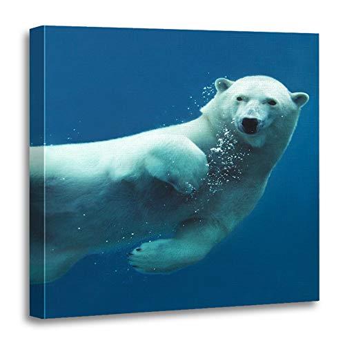 Arctic Ocean Underwater Camera - 5