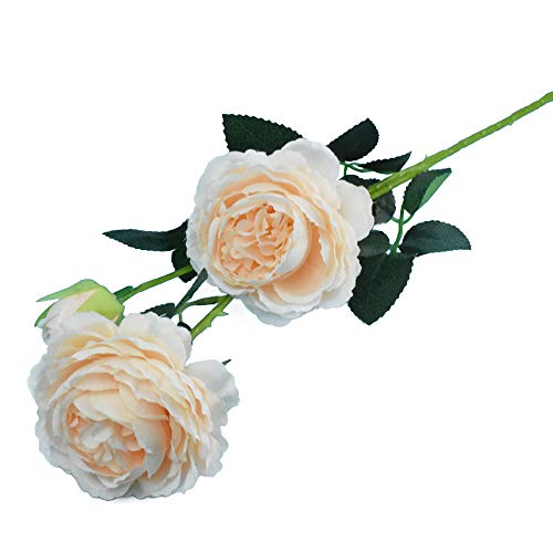 (Lacheln Artificial Silk Peony Flowers 3 Heads Long Stem Wedding Party Home Floral Decor,Pack of 6 (Champagne))