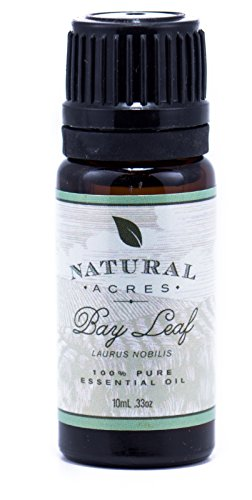 Bay Leaf Essential Oil   100  Pure Therapeutic Grade Bay Leaf Oil By Natural Acres   10Ml