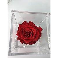 Cubo Rosa stabilizzata rossa 5cm, profumata è una vera e propria Rosa che dura anche piu di 5 anni