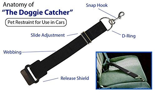 The Doggie Catcher for Cars by Smiling Dog