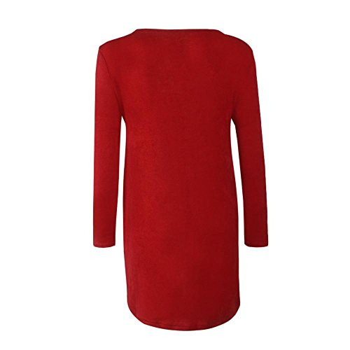 FAPIZI ♥ Women Dress ♥ Casual loose zipper sweater dress for women (L, Wine)