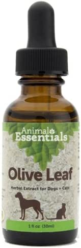 Animal Essentials Olive Leaf Herbal Extract