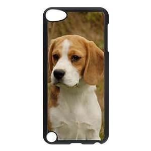Custom Beagle Dog Hard Case for Ipod touch5