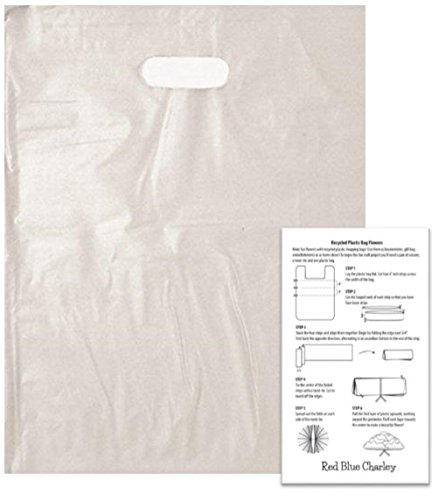 250 Die - 250 Clear 9x12 Frosted Die Cut Handle Bag 2.5 mil with Craft Insert