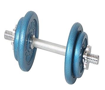 Nuevo ZUMZ 10 kg Acabado de horno de hierro fundido azul deportes SPINLOCK juego de mancuernas cuerpo tonificación aeróbica BICEPS entrenamiento ...
