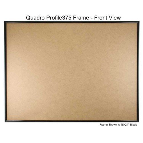 Frame Style Box - Quadro Frames 20x26 inch Picture Frame, Black, Style P375-3/8 inch Wide Molding, Box of 2