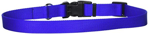 1 Inch Adjustable Collar - Coastal Pet Products DCP6901BLU 1-Inch Nylon Adjustable Dog Collar, Large, Blue