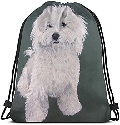 2cf49f12eaa1 Amazon.com  PengMin Cute Havanese Dog Art Drawstring Bag for Traveling Or  Shopping Casual Daypacks School Bags  Home   Kitchen