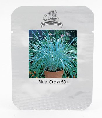 Hardy Perennial European Dune Blue Grass Seeds, Professional Pack, 20 Seeds / Pack, Leymus Arenarius Sea Lyme Grass #NF809