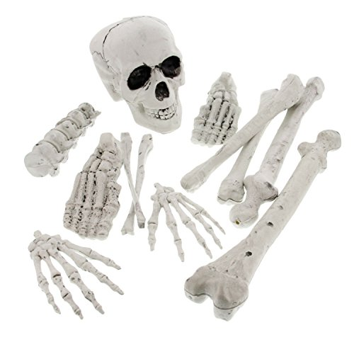 Halloween Haunters 12 Piece Bag of Plastic Skeleton Bones Prop Decoration - Spooky Graveyard Human Body Part Set, Skull & Crossbones ()