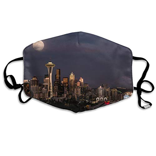 Premium Earloop Mouth Mask, Anti-Dust Anti Flu Pollenm Smog Respirator with Adjustable Elastic Band - Windproof New York City Skyline Half Face Mouth Medical Mask