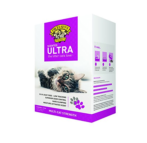 Dr. Elsey's Precious Cat Ultra Scented Scoopable Hard