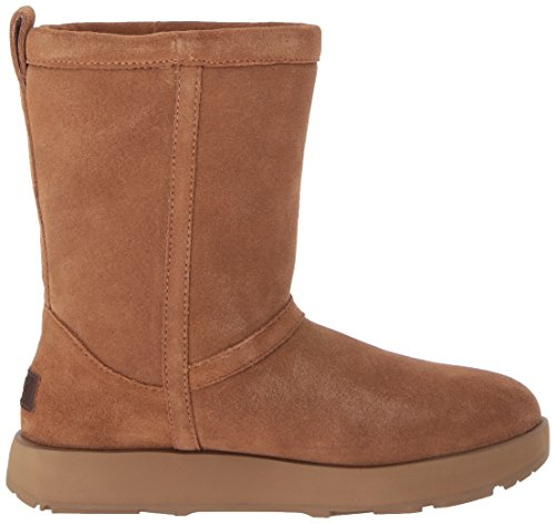 Women's Sheepskin Waterproof Boot Short Top UGG High Marrone Classic S1BwxT