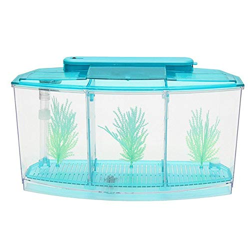 1Set 3L 28  10  15cm Purple bluee Plastic Fish Tank Small Fish Baby Mini Aquarium Separation Spawning Breeding Box   bluee, 3L