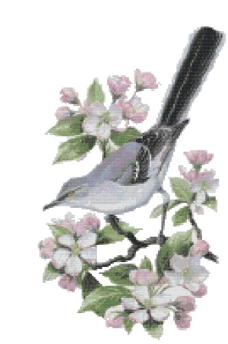 Arkansas State Bird (Northern Mockingbird) and Flower (Apple Blossom) Counted Cross Stitch Pattern