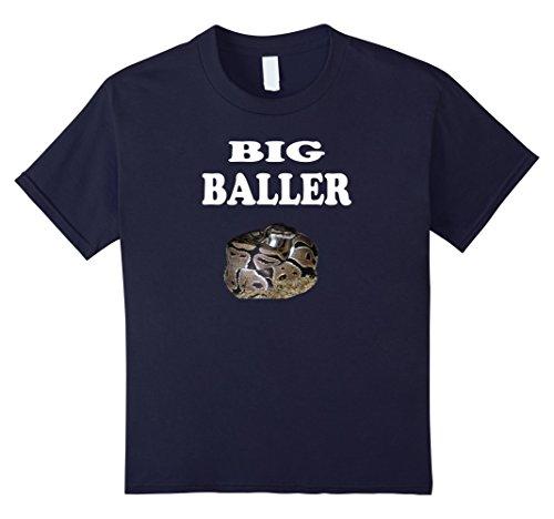 Baby Ball Python - 7