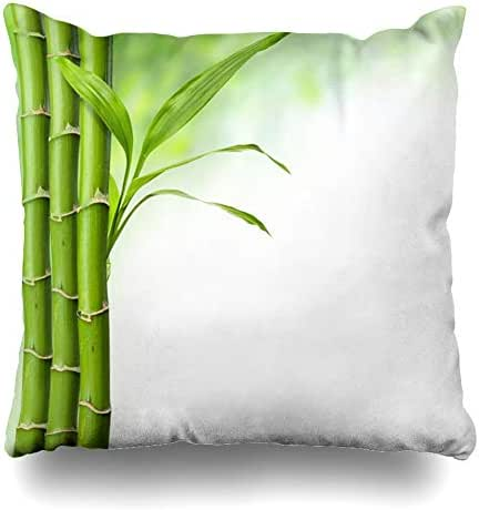 Ahawoso Decorative Throw Pillow Cover Square 18x18 Green Alternative Bamboo Grove Leaves On White Healthcare Medical Medicine Aroma Aromatherapy Asian Zippered Pillowcase Home Decor Cushion Case