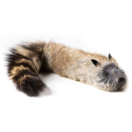 Spring Animal Raccoon - Magic Makers Junior Robbie Raccoon - Spring Animal - Pocket Size Lifelike Trick Raccoon