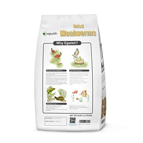 FDA Certified 5Lbs Natural Dried Mealworms High Protein Treats for Wild Birds, Early Bird Premiere ()