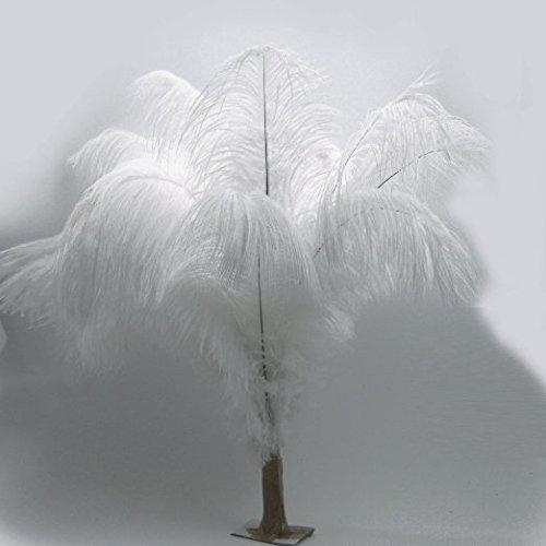KOLIGHT10pcs Ostrich Feather White 12