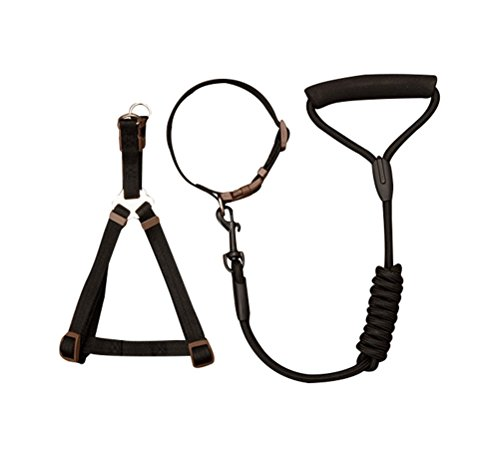 [Freerun Pet Braided Nylon Dacron Dog Leash with Adjustable Harness and Collar 3 Pieces Set - Black,] (Make Shoulder Pads Football Costume)