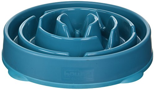 Slow Feeder Dog Bowl Fun Feeder Stop Bloat Bowl for Dogs by Outward Hound, Large, (Dog Den)