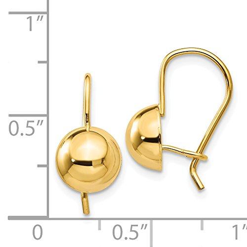 0.6IN x 0.3IN 14k Yellow Gold 8.00mm Hollow Half Ball Kidney Wire Earrings