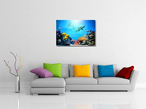 Underwater Scene Coral Reef Colorful Fish Groups Sharks and Sunny Sky Shining Through Clean Ocean Water High Resolution