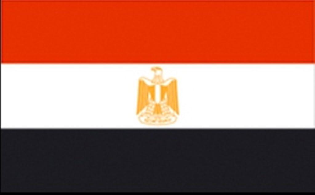 FRIP de XXL gigante Bandera Egipto Fan 2, 50 x 1, 50 m Bandera Banderas con ojales: Amazon.es: Jardín