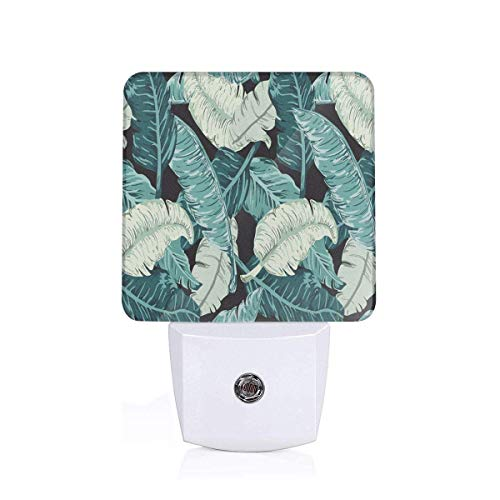 The Blue, Green, White Banana Leaves are Joined Together 2 Pack Auto Sensor LED Dusk to Dawn Night Lights Plug in for Kids Baby Girls Boys Adults Room (Banana Lamp Fish)