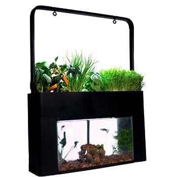 Aquarium Kits
