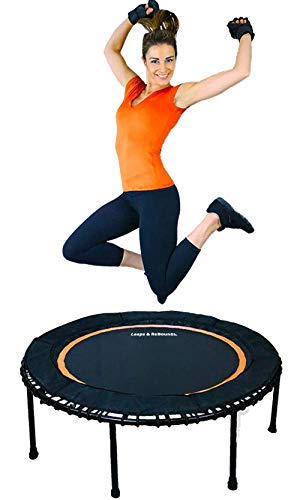 Leaps & ReBounds: Rebounder - Fitness Trampoline - Full-Size Protective Mat - Minimal Joint Impact - High-Calorie Burn - Improve Cardio, Balance, and Physical Strength (Needak Rebounder Best Price)