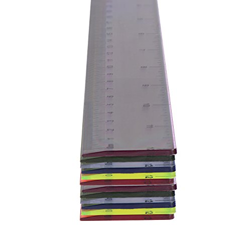 Soho S-12 Ruler Case Assorted Colors